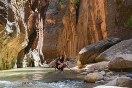 Capa do The Narrows, Zion National Park, Utah, EUA